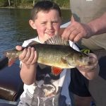 perch fishing Roscommon
